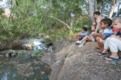 A group of children quietly observe a beaver at work in Alhambra Creek in Martinez, California