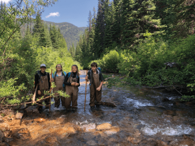 Members of a Montana Conservation Corps youth crew make their way up a stream while assessing beaver habitat in Lolo National Forest